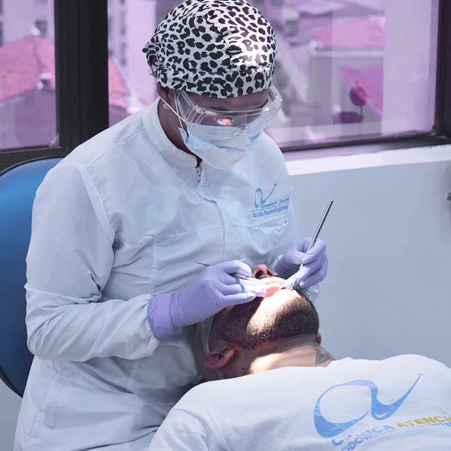 endodoncia odontologia clinica